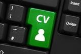 El comercio electronico crea mas empleos expandiendo las operaciones online y offline